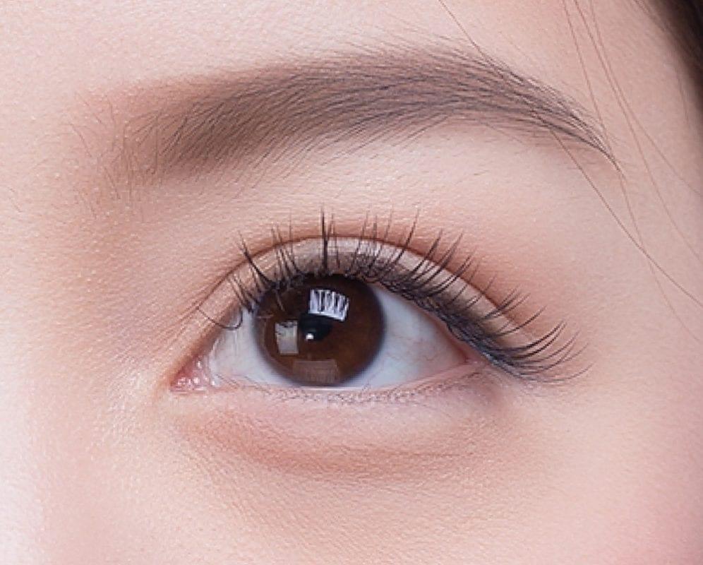 lashury eyelash extensions natural