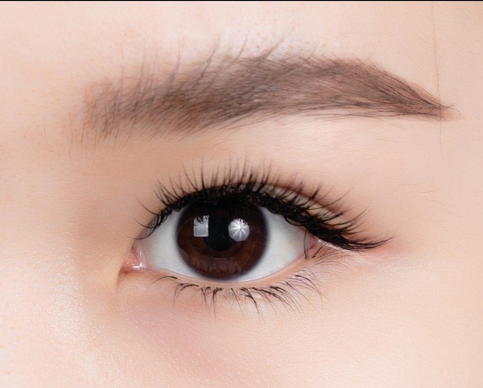 lashury eyelash design confident look